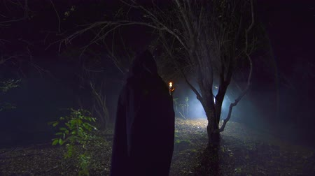 mese : a figure in a black robe with a candle goes through a mysterious forest
