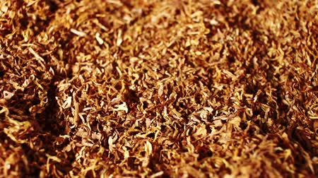 tobacco : Tobacco grains rotating pattern macro texture background backdrop footage video.