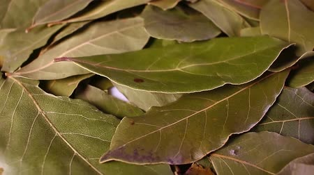 Laurel leaf. Dry whole spice leaves rotating pattern macro texture background backdrop footage video.