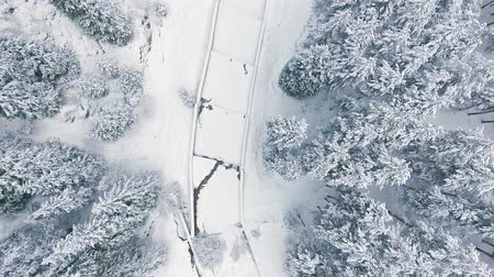 Aerial view time lapse mountain forest at winter. People adventure