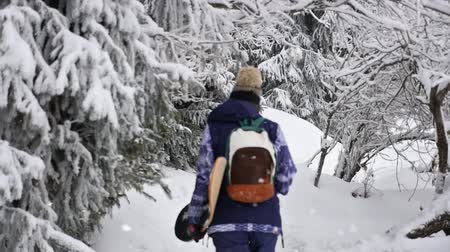 Footage of snowboarder woman adventure, walking to snowy alps mountains Stock Footage