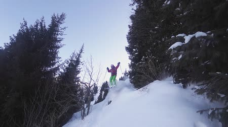Slow motion footage of skier jumping from tree at mountain, winter Stock Footage
