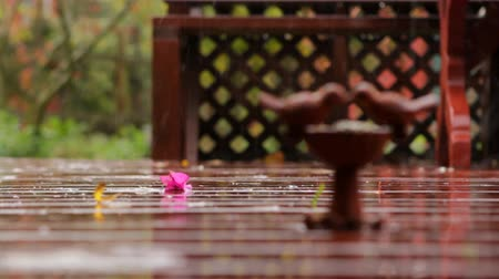 miłość : Rain falls on stone bird bath on beautiful wooden deck love