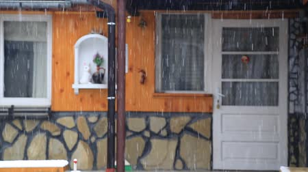 outside view : Snow falls in the yard