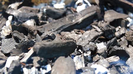 briquette : Preparing charcoal for barbecue closeup Stock Footage