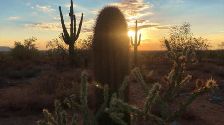 occidente : Tramonto del deserto di Scottsdale Arizona