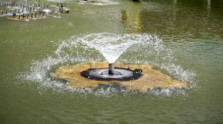 poça de água : The fountain in the outdoor pond was rapidly rising.