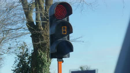 traffic light with the countdown