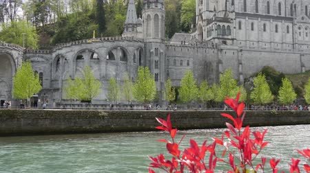 View of the cathedral in Lourdes, France, with gave de Pau Stok Video