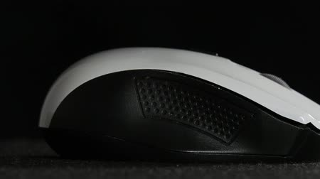 mouse of computer