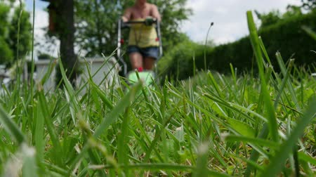 mow : a woman mowing the lawn Stock Footage