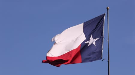 teksas : Flag of the state of Texas, United States of America
