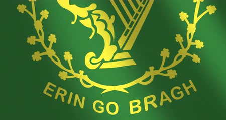 constante : Bandera Erin va bragh viento moviéndose Archivo de Video