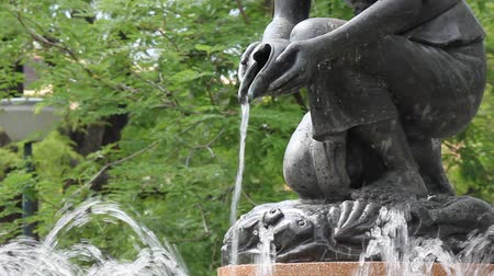 fontein : water in de tuin Stockvideo