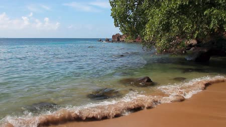 In de baai van Indian Bay. Kingstown, Saint Vincent en de Grenadines Stockvideo