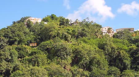 Voorsteden van stad op tropisch eiland. Kingstown, Saint Vincent en de Grenadines Stockvideo