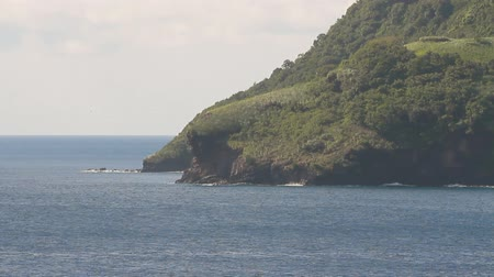 Zee en rotsachtige kust. Kingstown, Saint Vincent en de Grenadines Stockvideo