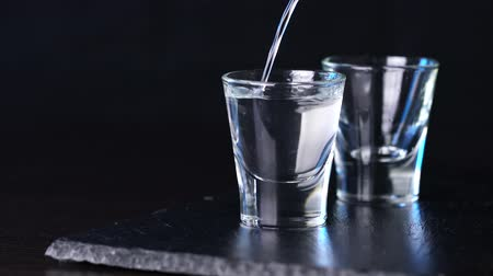 tonik : alcohol vodka poured in glasses on a dark background Stok Video