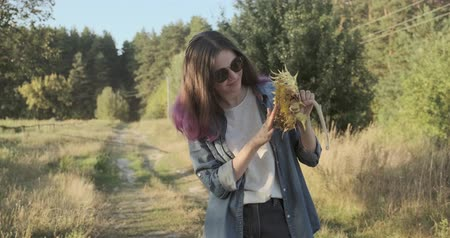 hour hand : Young beautiful girl with ripe sunflower in hands, nature background, end of summer sunflower harvest, golden hour sunset Stock Footage