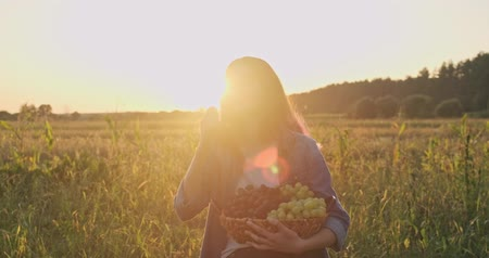 Young beautiful girl holding basket of organic fresh grapes and eating grapes, rustic style, natural landscape golden hour