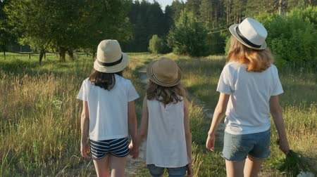Children three girls in hats holding hands walking back along the rural country road, beautiful summer landscapes of nature, golden hour Stok Video