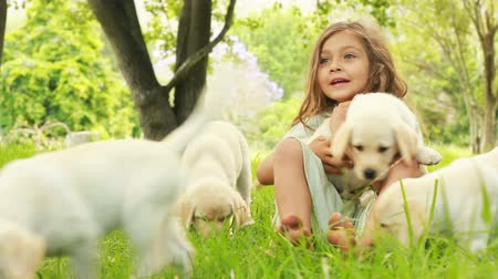 playing with a dog : Little Girl Playing With Puppies in park Stock Footage