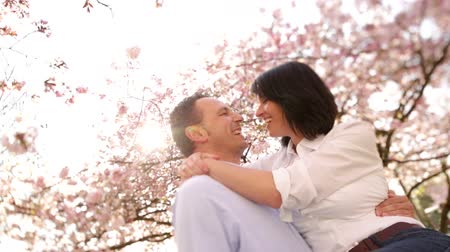 transportar : Mature husband lifting is happy wife for a kiss under cherry blossoms, the couple enjoying spring sunshine