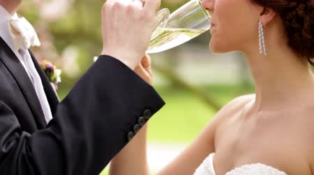 casamento : Newlyweds drinking champagne on their sunny wedding day