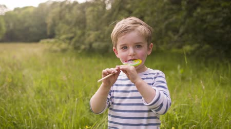 colorful candy : Little boy eating colorful lollipop that is given to him