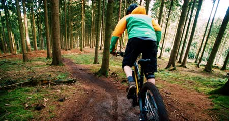 lesiklás : Mountain Biker starting to go downhill in slow motion with MTB in the woods