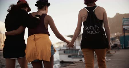 outside view : Rearview shot of three teenage grunge girls spending their time walking around a light industrial harbor together Panning in Slow Motion Stock Footage