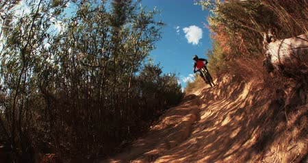 cena não urbana : Mountain biker picking up speed while riding down trail in slow motion