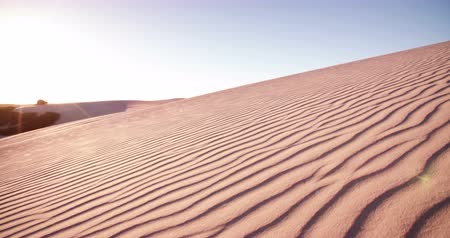 quad bike : Competitive quad biker with bright sun flare behind driving in a desert race  in Slow Motion
