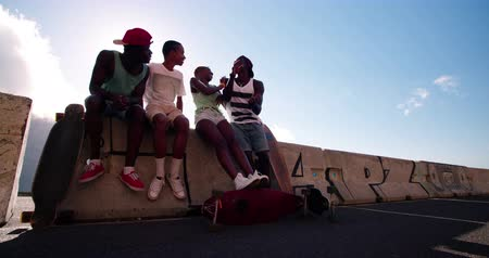 longboarder : Group of mixed race cool teenage skater friends hanging out together while sitting on a wall