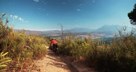 wilderness : Mountain biker riding cross country along a dirt road in nature Stock Footage