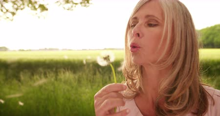dmuchawiec : Beautiful mature woman in a green park landscape blowing the seeds from a dandelion plant surrounded by nature, Panning in Slow Motion
