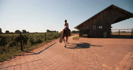 helmets : Rearview of a girl riding her horse away from the camera along a path on a lush green farm  in Slow Motion