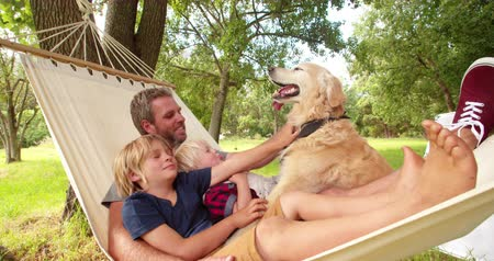 гамак : Modern father relaxing and enjoying quality time with his two blonde sons and labrador dog outside in hammock in Slow Motion
