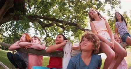 парк : Children of mixed race group sitting in a row on a fence in a lush green park on a summer day under a big tree laughing playfully