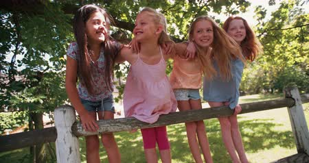 amigos : Row of little girls standing on a rustic wooden fence on a sunny summer day in a park underneath a large tree with lush green leaves in a vintage style develop