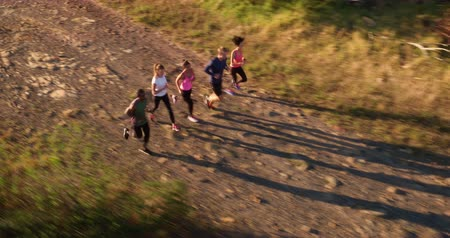 teen action : Back view of four athletic friends engaged in a outdoors running training in a road surrounded by nature . Aerial drone view. Stock Footage