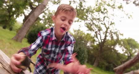 fantazja : Excited little boy playing with his t-rex dinosaur toys in garden or park with his open mouth missing teeth. Wideo