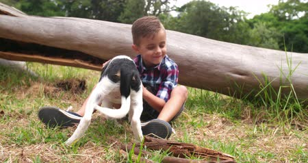 mestiços : Playful boy holding stick for his black and white mischievous puppy dog to play with.