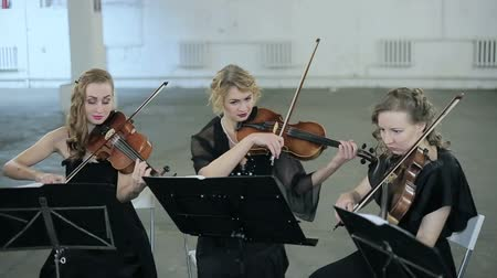 playing band : Close-up. Three violinists of musician playing violin