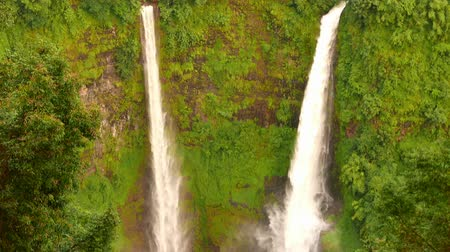 Pan shot first showing the jungle on the Bolaven plateau and subsequently Tad Fane Waterfall, a picturesque twin set of waterfalls spilling over 100 meters down into a deep gorge, located in Laos. Stock mozgókép