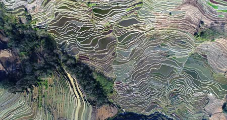 Rotating aerial view on worlds most spectacular rice fields, the Yuanyang Hani Rice Terraces in southeastern Yunnan province, China. UNESCO World Cultural Heritage Site since 2013. Stock mozgókép