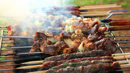meal : Tasty grilled meat, barbecue cookout, preparing kebabs outdoors, delicious meal on picnic. Full HD Video 1920x1080 Stock Footage