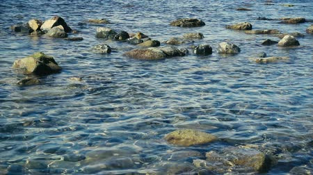 A small movement of crystal clear water on a stony shore slow motion Stok Video
