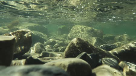 Sunlight on rocks covered with algae under water slow motion