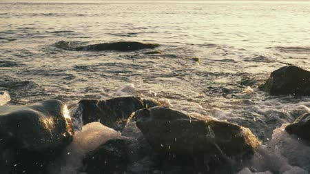 Slow mo wave rolls on large stones in the foreground in the water at sunset Stok Video